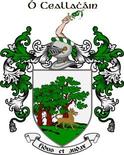 O'CALLAGHAN family crest