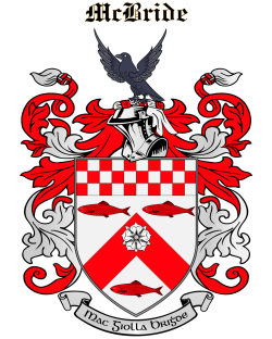 MCBRIDE family crest